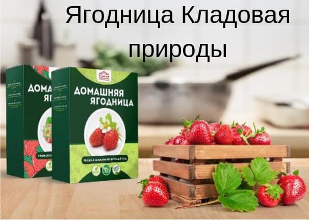 Набор домашняя ягодница кладовая природы фото